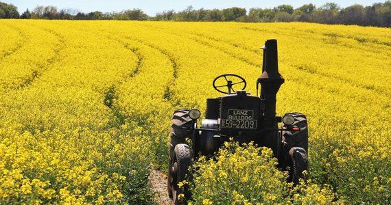 Biodiesel – przyjazny dla środowiska i budżetu
